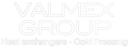 logo Valmex Group